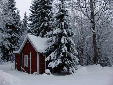 Small cabin and trees covered in snow