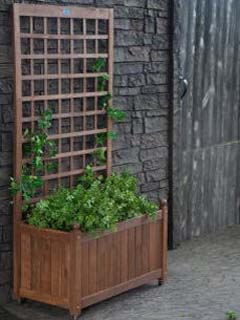 Just add dirt and climbing vines to this planter box with trellis