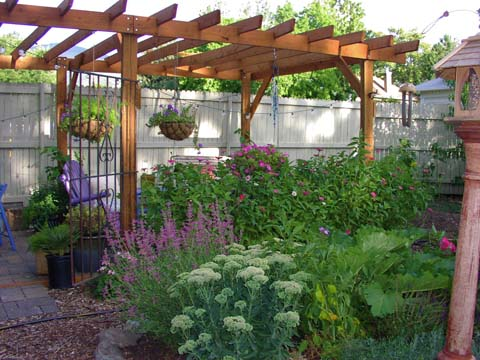 Simple wood pergola in this backyard garden